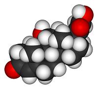 Cortisol-3D-vdW