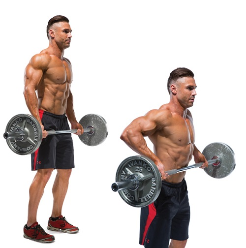 barbell-drag-curl