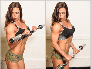 Reverse-Barbell-Curls
