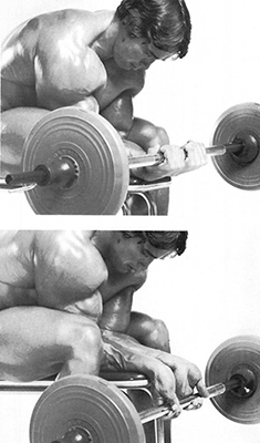 barbell_wrist_curls1