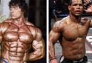 The Secret Keeping Both Bodybuilders and MMA Fighters Shredded!