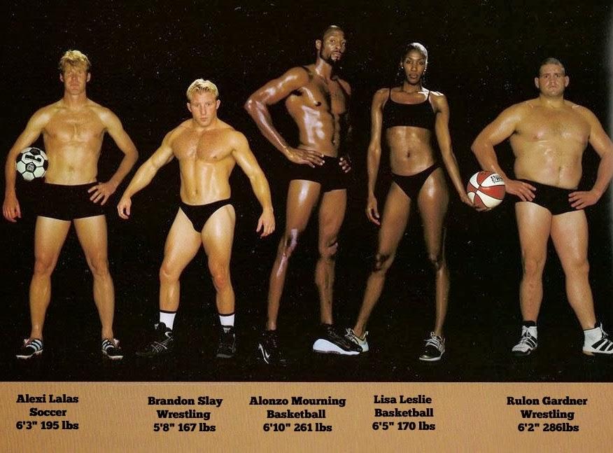 bodytypes10