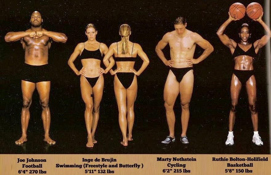 bodytypes11