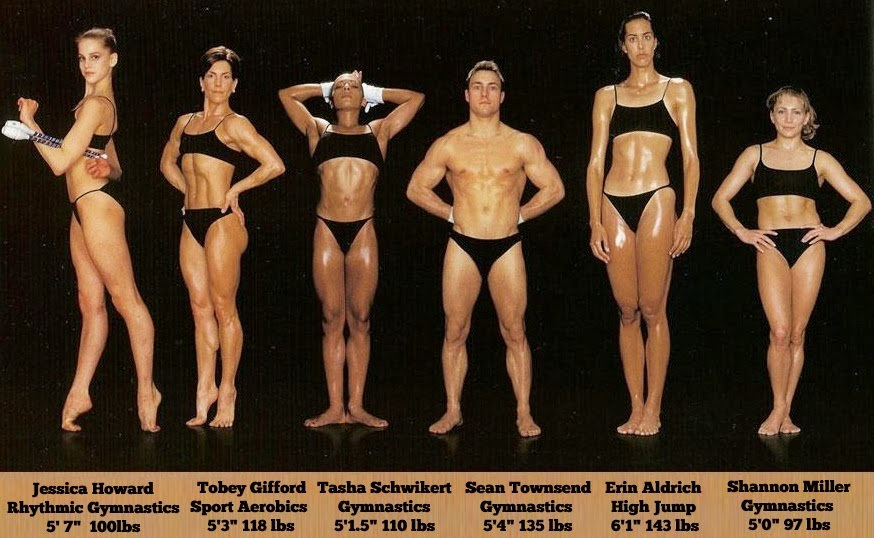 bodytypes12